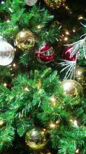 DSC_1077クリスマス画像7期生