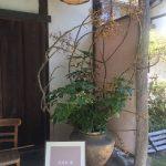 ウィメンズクラブ4月定例研究会 春の「武相荘」を訪ねて